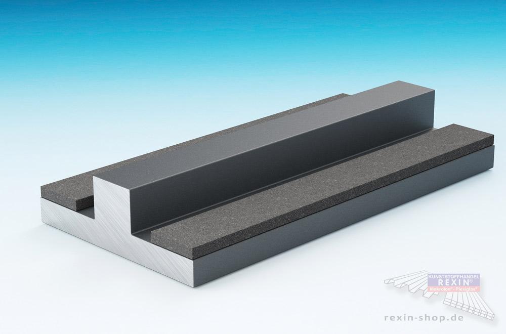 Eine T-Glasstoßleiste in der Farbe Anthrazit: Praktisches Hilfsmittel für Terrassendächer mit Verbundsicherheitsglas.
